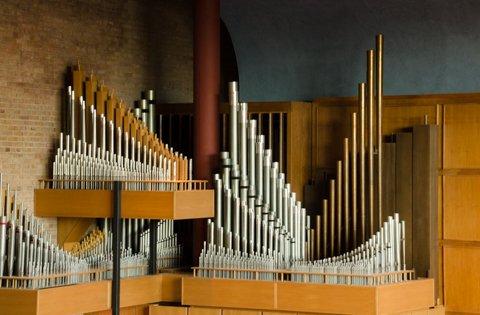 organ-480